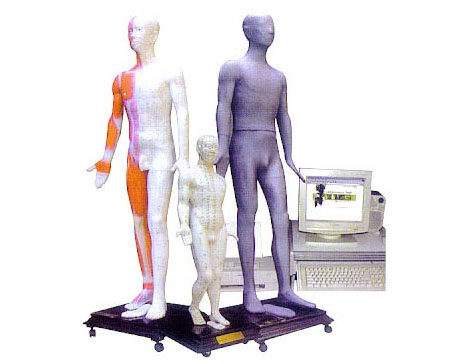 多媒体针灸人体穴位发光模型
